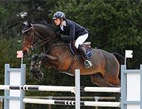 Tarifs Stages et Cours équitation - Coaching