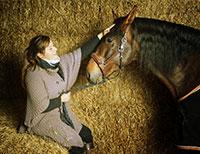 Tarifs Stages et Cours équitation - Pension