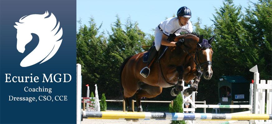 Concours équestres Rambouillet