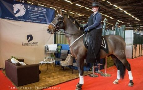 Salon du Cheval 2016