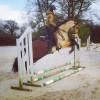 Louise & SULTAO - Entraînement pour l'équitation de travail